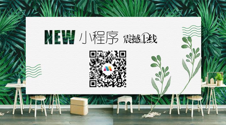 棉棉网广告位3